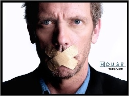 Plastry, Dr. House, Hugh Lauriego